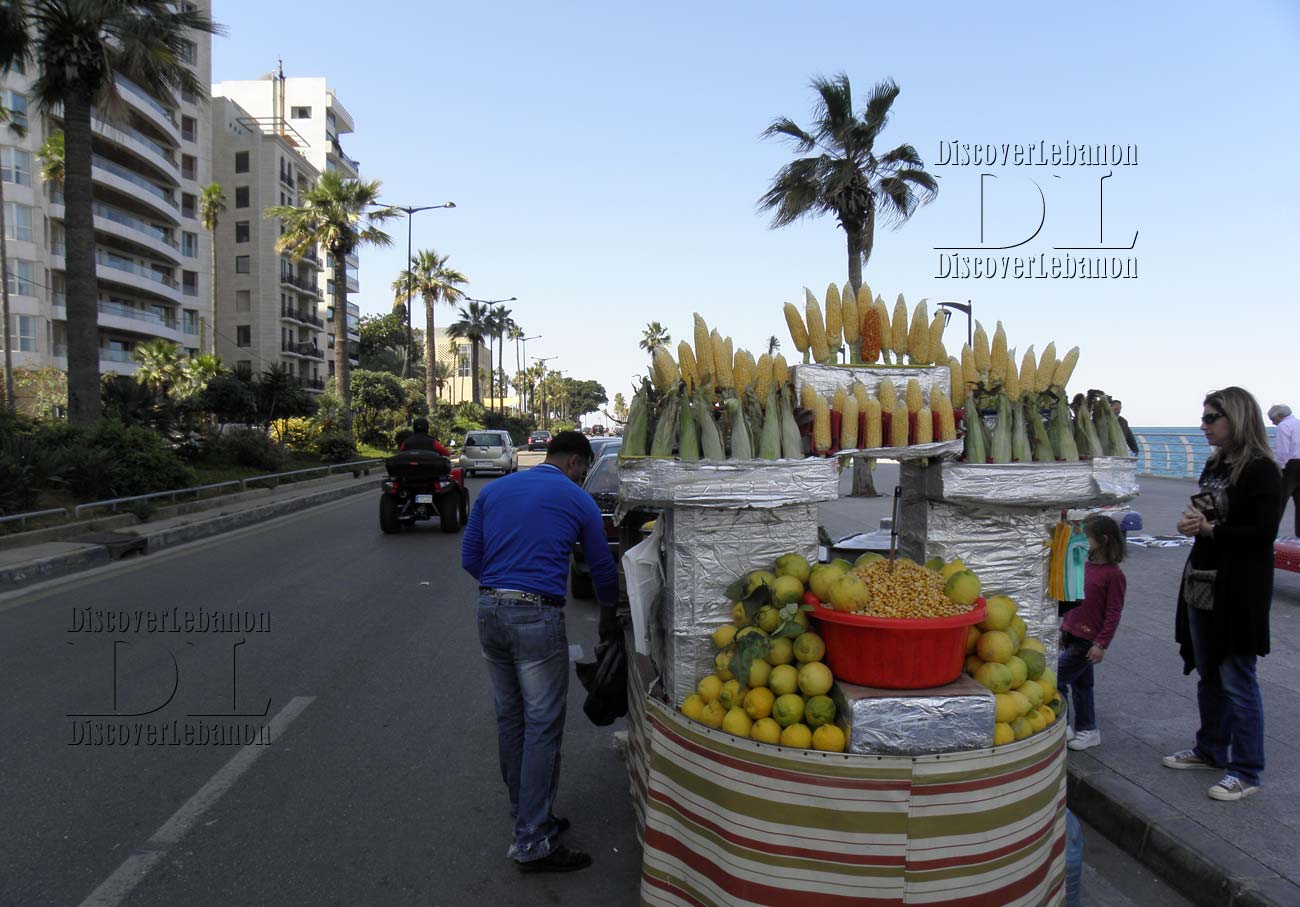 Wallpapers Hd High Resolution Images Of Lebanon Seller